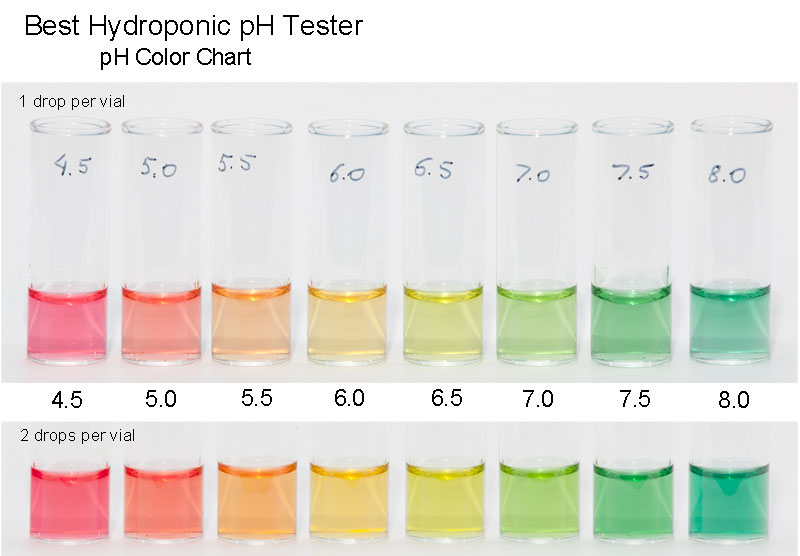 Best Hydroponic Ph Tester