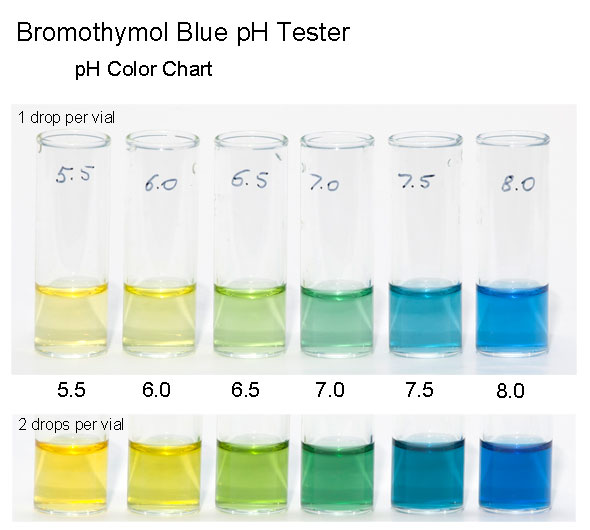 what is the mechanism driving the bromothymol blue solution color change Experiment 1: fermentation by yeast procedure final gas height (mm) net change post-lab questions 1 include your hypothesis from step 1 here hypothesize why some of the sugar or sweetener solutions were not metabolized, while others were.